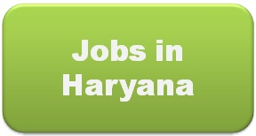 Jobs in Haryana- 4 Lakh Youths to Get Employment Opportunities in Haryana